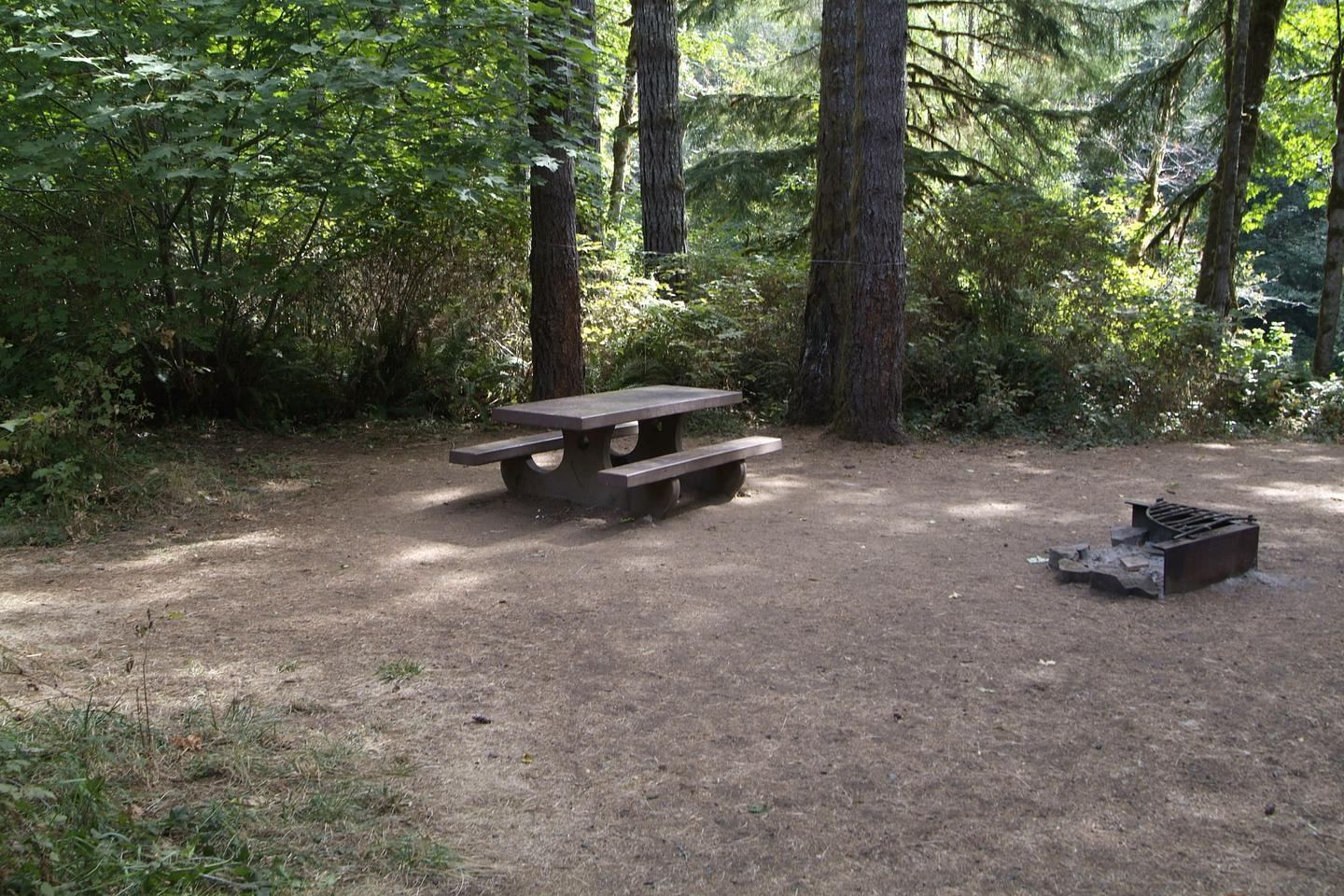 Table and fire ring for camp site 8. Camp site 8 table and fire ring.