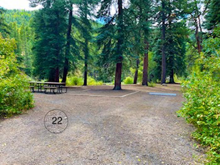 Aspen Glade site 22