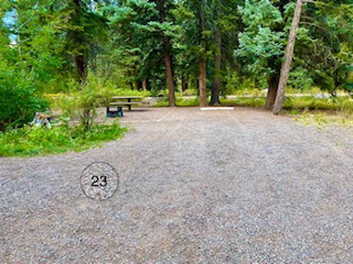 Aspen Glade site 23
