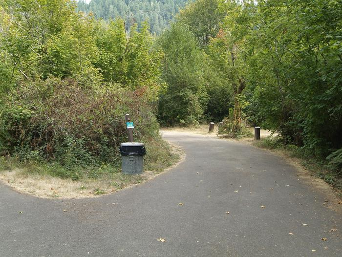 Camp site 17: includes pull through parking, table, fire ring, tent pad, and Whittaker Creek access.