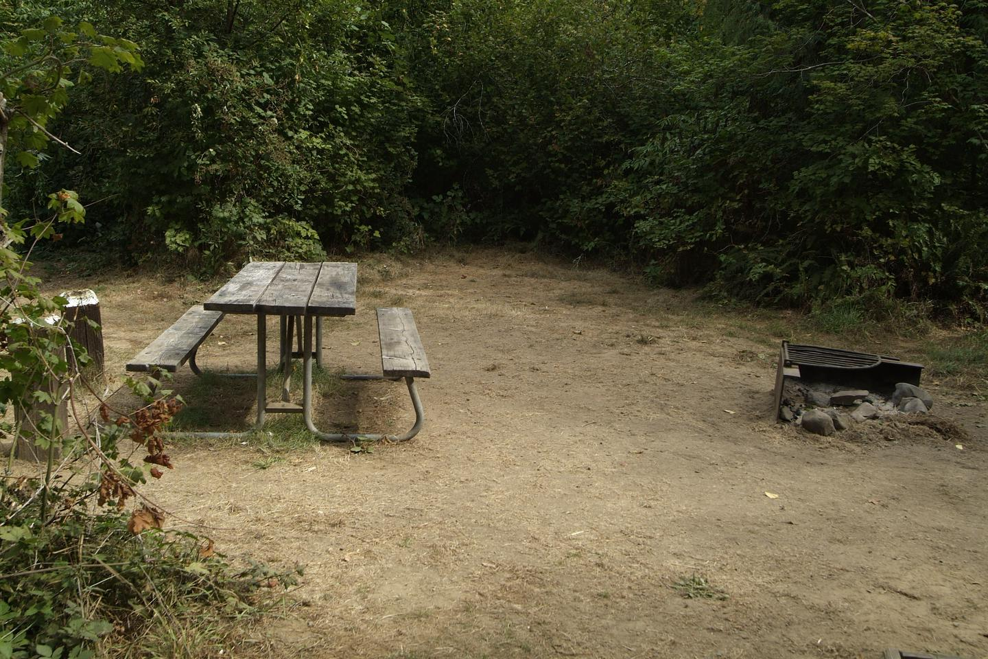 Table and fire ring for camp site 17. Camp site 17 table and fire ring.