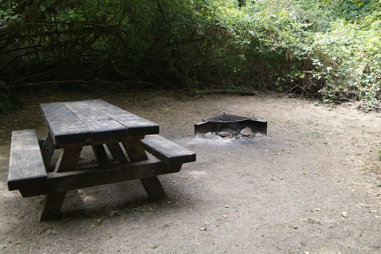 Table and fire ring for camp site 18. Camp site 18 table and fire ring.