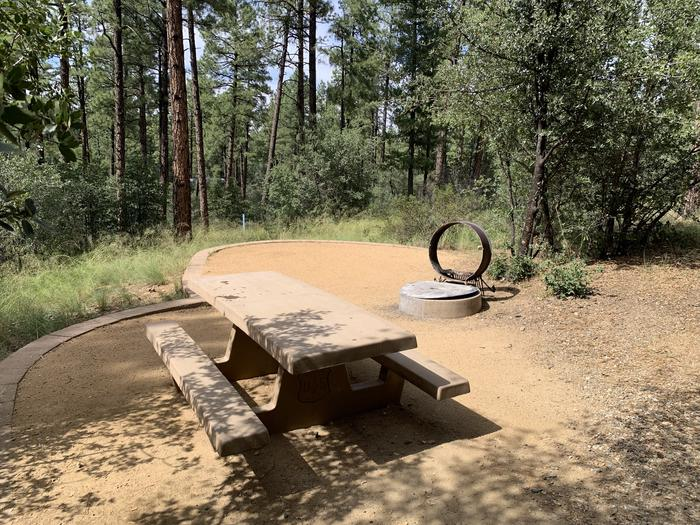 A photo of Site 08 of Loop B at LYNX CAMPGROUND with Picnic Table, Fire Pit