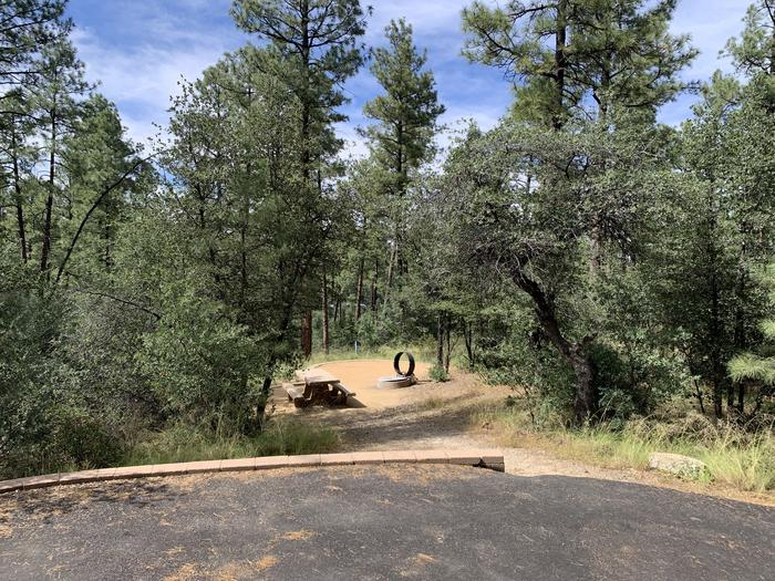 A photo of Site 08 of Loop B at LYNX CAMPGROUND with Picnic Table, Fire Pit.  On street, parallel parking shown with slightly graded path down to campsite.