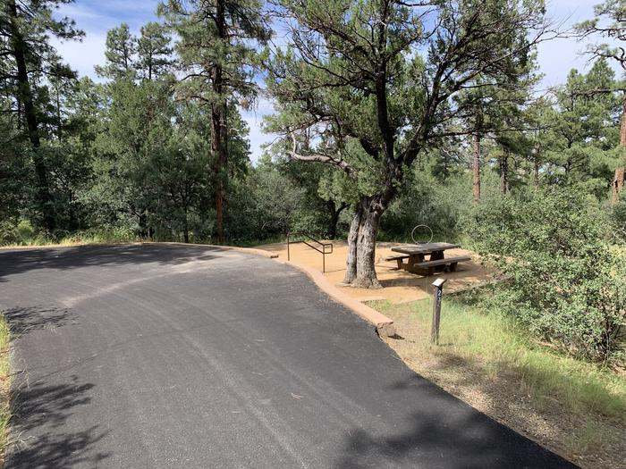 A photo of Site 23 of Loop E at LYNX CAMPGROUND with Picnic Table, Fire Pit with on street, parallel parking and three steps down to campsite.