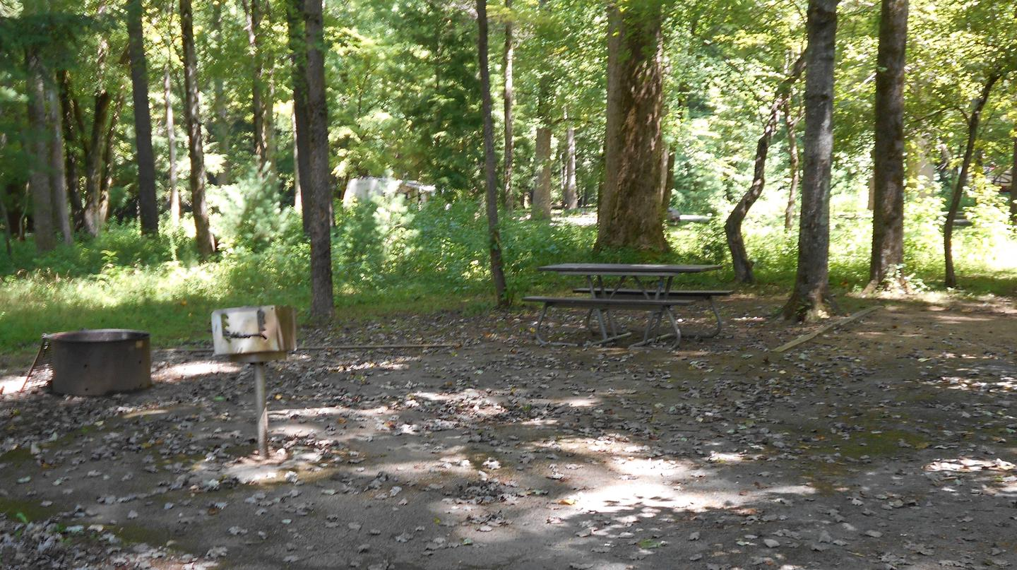 Cades Cove Campground A03 Accessible Site showing picnic table and fire ringA03 Accessible Generator Site