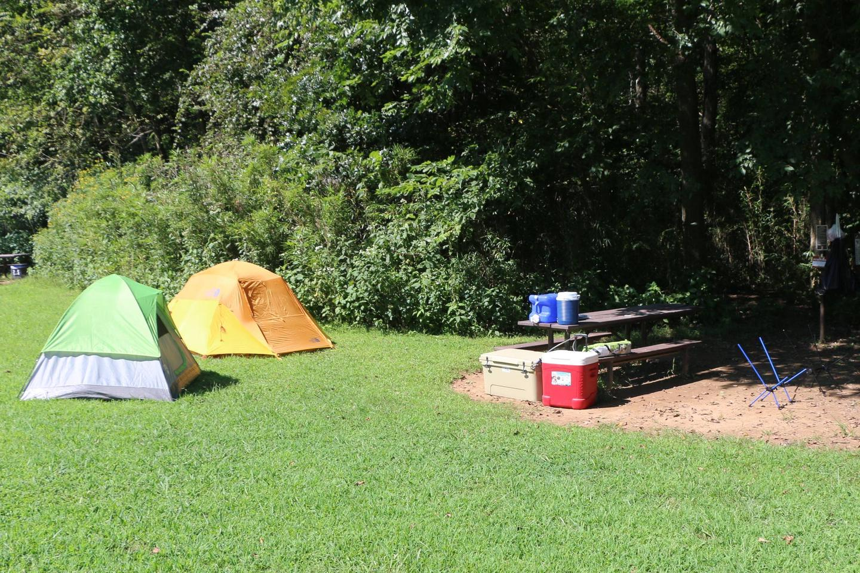 Steel Creek Camp Site #8