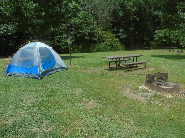 Steel Creek Camp Site #17