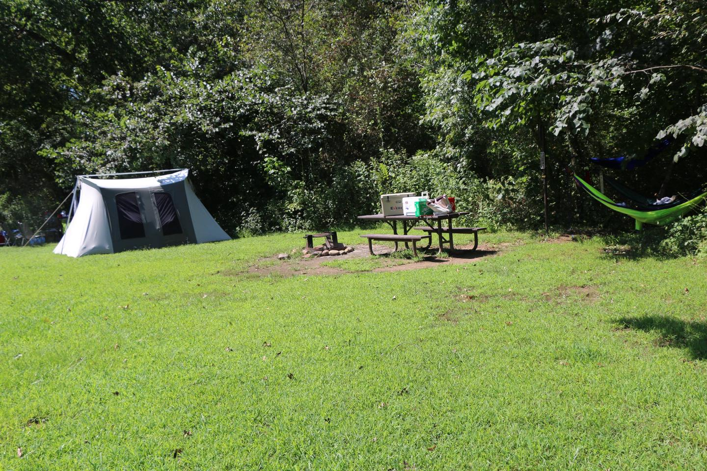 Steel Creek Camp Site# 21Steel Creek Camp Site #21