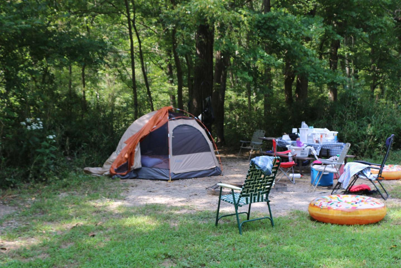Site 26-6Steel Creek Camp Site #26