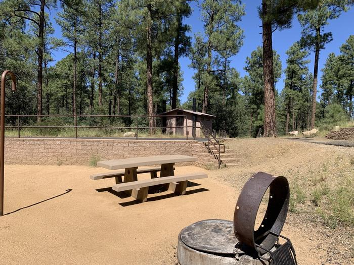 A photo of Site 16 of Loop D at LYNX CAMPGROUND with Picnic Table, Fire Pit. Six stairs up to on-street parking. Vault latrine in background.