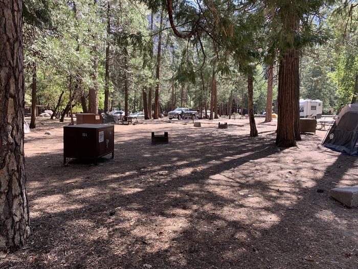 Tent area of site 101 Upper Pines