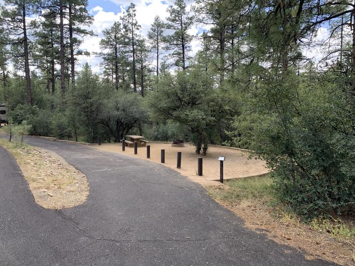 A photo of Site 01 of Loop A at LYNX CAMPGROUND with Picnic Table, Fire Pit, and pull-through driveway.