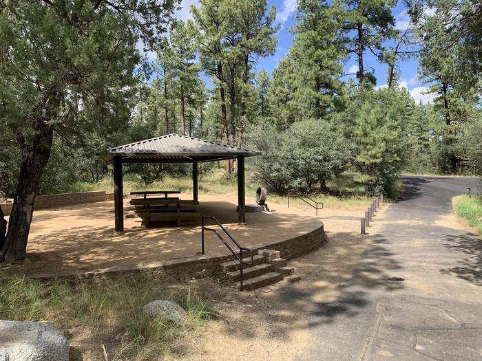 A photo of Site 19 of Loop D at LYNX CAMPGROUND with Picnic Table, Fire Pit, Shade with long pull through driveway. 5 stairs to campsite.