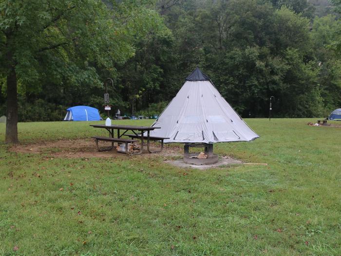 Steel Creek site #11Steel Creek Camp Site #11