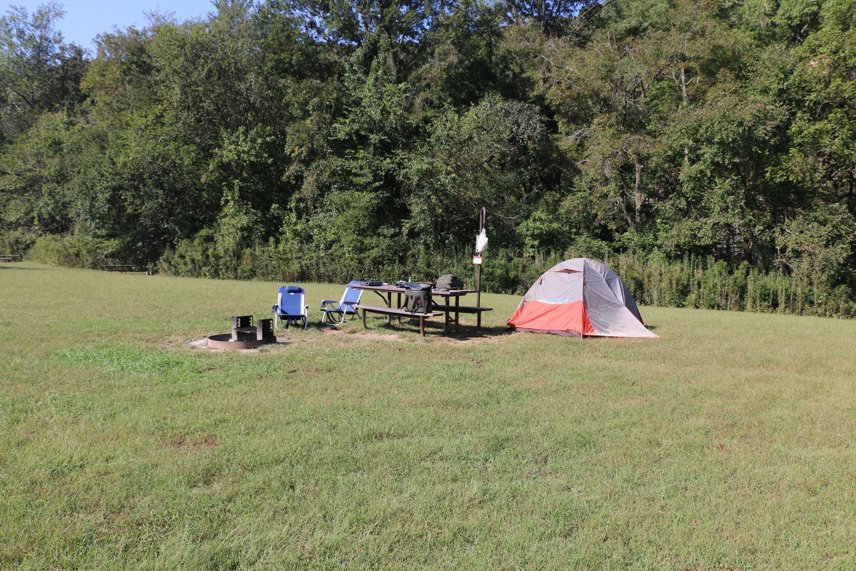 Steel Creek Camp Site #3 (photo 2)Steel Creek Camp Site #3