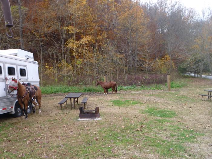 Steel Creek Horse Camp Site #28