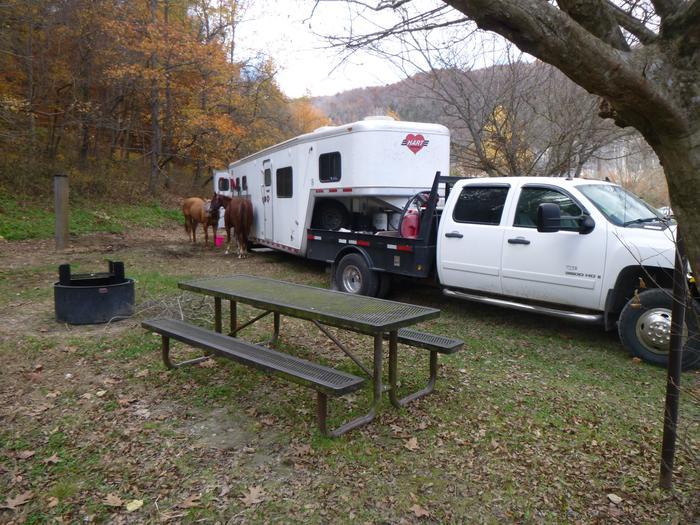 Steel Creek HC #33Steel Creek Horse Camp Site #33