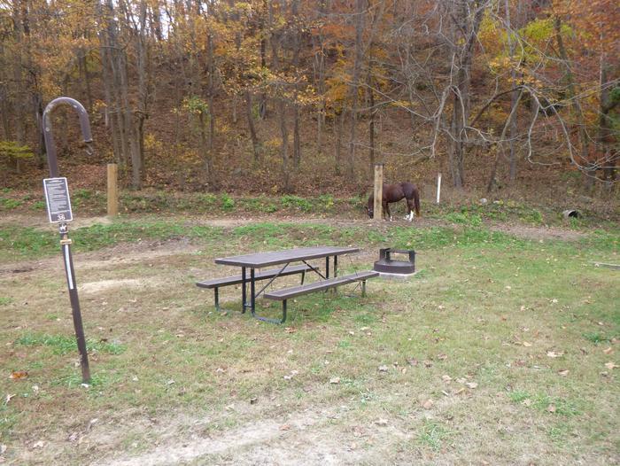 Steel Creek Horse Camp Site #36