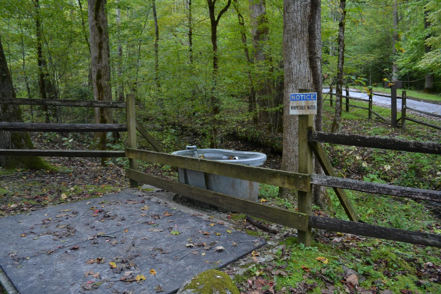 Big Creek Horse Camp water source for horsesNon-potable water trough for horses