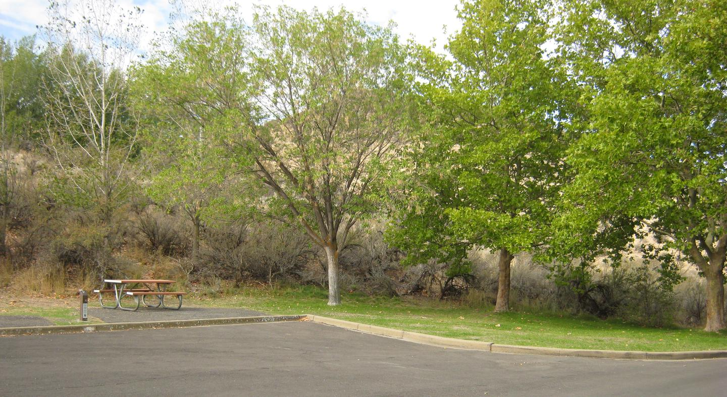 Alternate view of Site 32Back-in Paved parking with Sage brush and Trees in Background.