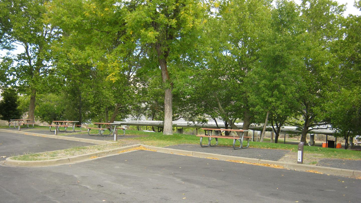 Alternate view of Site 39. **No tents allowed on the watered grass.Site 39. **No tents allowed on the watered grass.