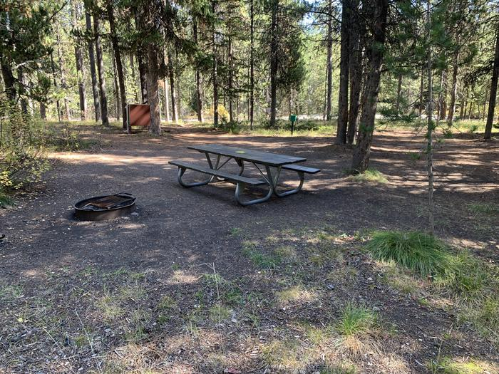 A photo of Site 13 of Loop Main Road at Lizard Creek Campground with Picnic Table, Fire Pit, Shade, Food Storage
