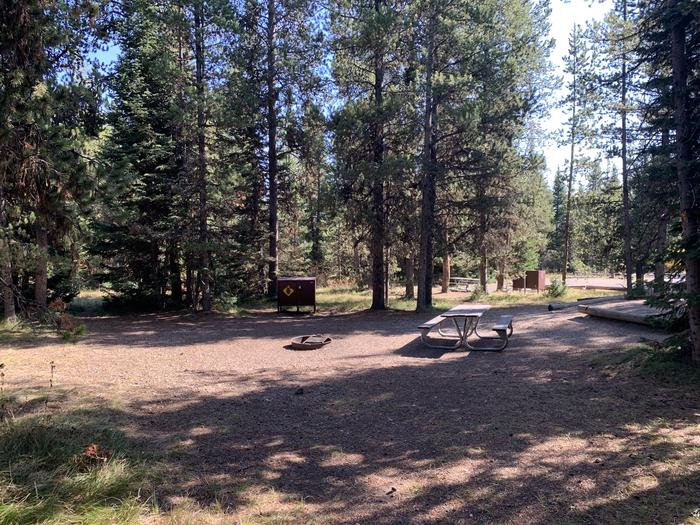 A photo of Site 59 of Loop  Loop 1 at Lizard Creek Campground with Picnic Table, Fire Pit, Shade, Food Storage