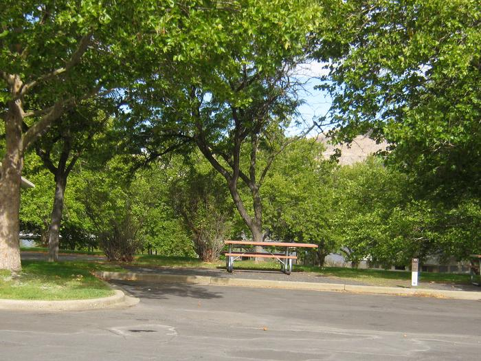 Back in paved parking. **No tents allowed on the watered grass.Site 43, **No tents allowed on the watered grass.