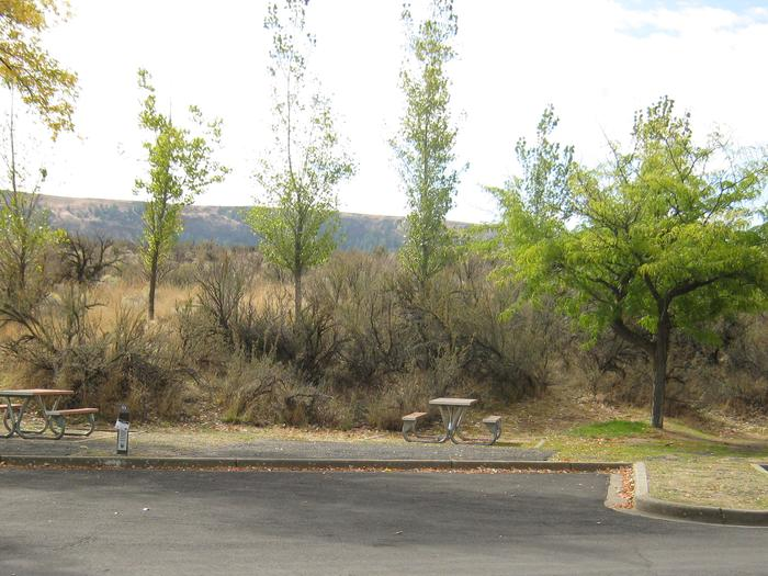 Back in paved parking with brush in the background.Site 53