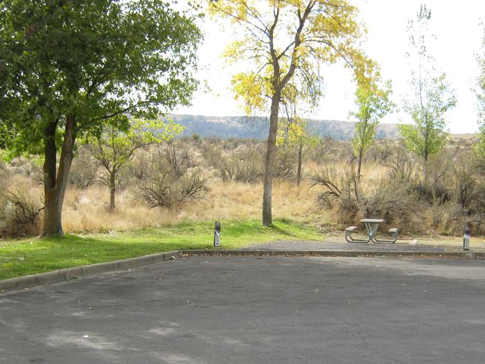 Back in paved parking with brush in the background.Site 54