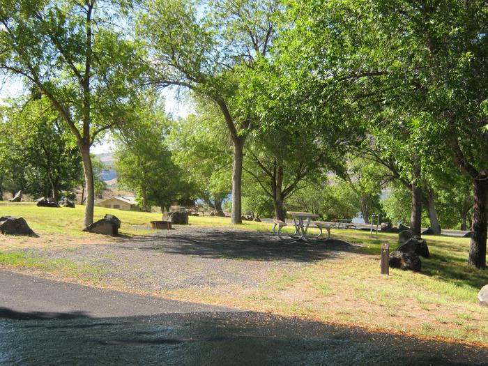 Site 2Back in gravel parking. Partially shaded site with trees in the background.