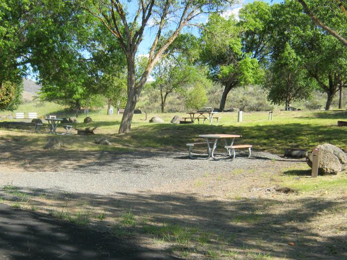 Site 11 - Partially shaded spotGravel parking, Partially shaded spot