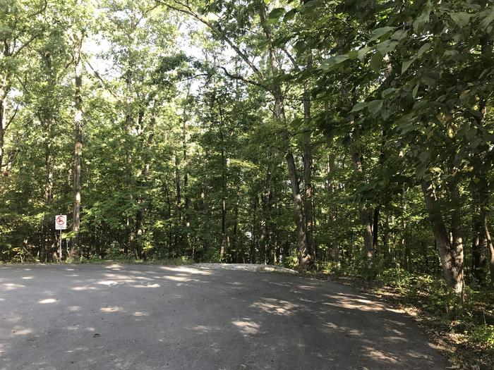 Site 92 Trail to Lake