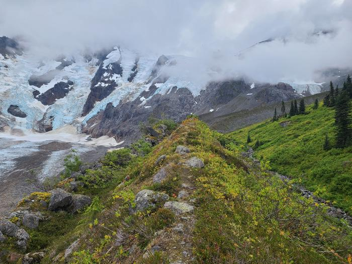 View of Laughton Glacier from the moraine. Approx a 1 hour hike up the trailLaughton Glacier
