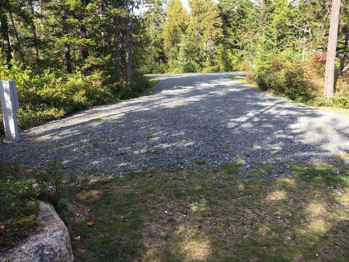 A photo of Site A12 As Viewed From The Rear Of The SiteA photo of Site A12 of Loop A-Loop at Schoodic Woods Campground with Picnic Table, Electricity Hookup, Fire Pit