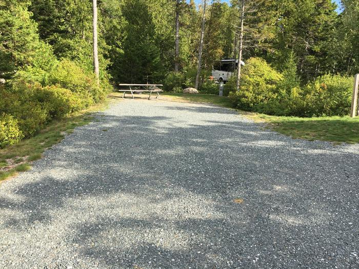 A photo of Site A11 as Viewed From The RoadA photo of Site A11 of Loop A-Loop at Schoodic Woods Campground with Picnic Table, Electricity Hookup, Fire Pit