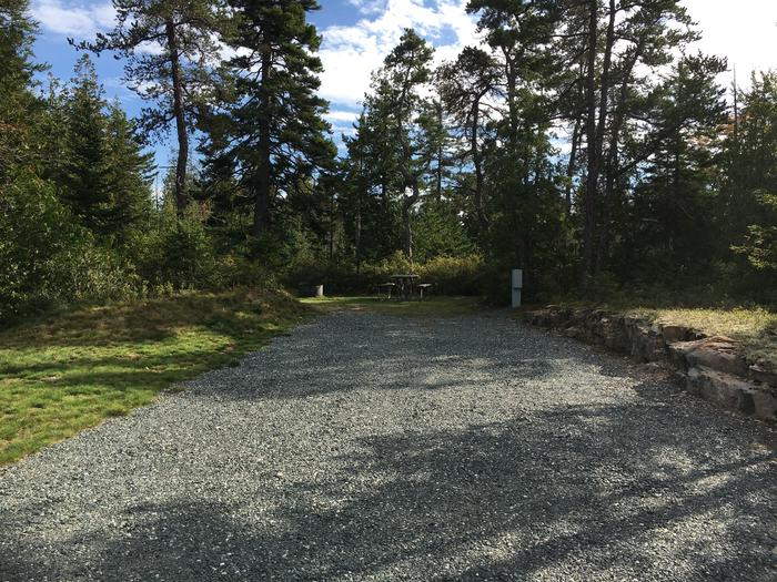 A photo of Site A08 as Viewed From The RoadA photo of Site A08 of Loop A-Loop at Schoodic Woods Campground with Picnic Table, Electricity Hookup, Fire Pit