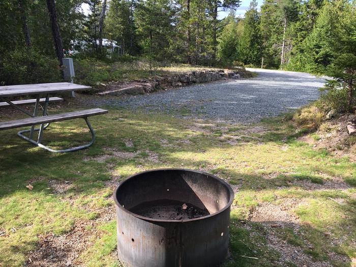 A photo of Site A08 As Viewed From The Rear Of The SiteA photo of Site A08 of Loop A-Loop at Schoodic Woods Campground with Picnic Table, Electricity Hookup, Fire Pit