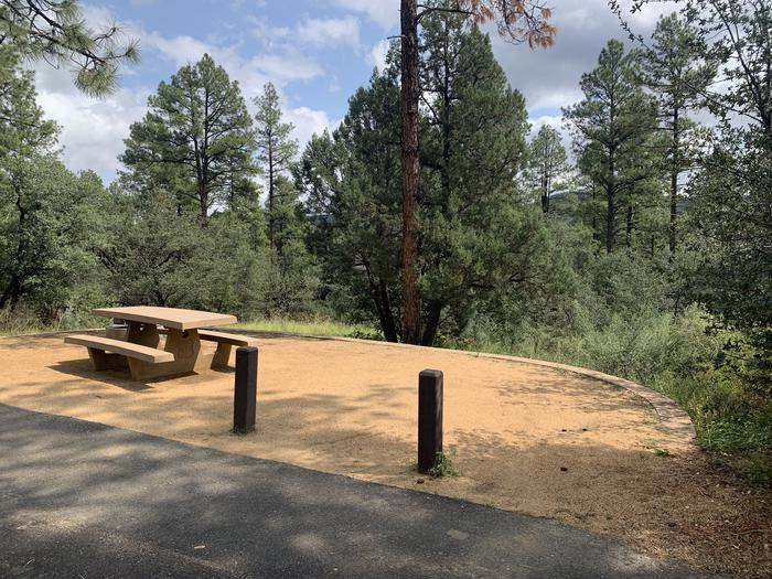 A photo of Site 24 of Loop F at LYNX CAMPGROUND with Picnic Table, Fire Pit