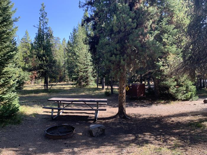 A photo of Site 61 of Loop Loop 1 at Lizard Creek Campground with Picnic Table, Fire Pit, Shade, Food Storage