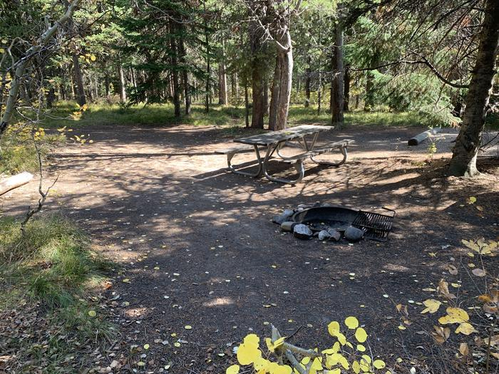 A photo of Site 23 of Loop Loop 2 at Lizard Creek Campground with Picnic Table, Fire Pit, Shade, Food Storage
