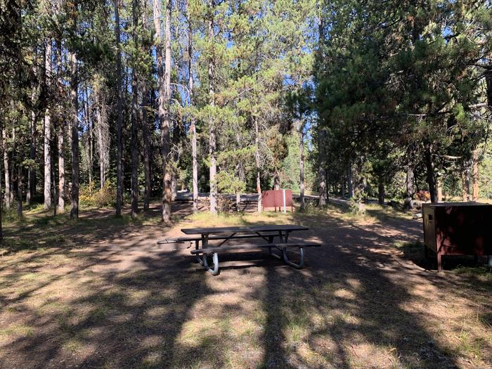 A photo of Site 56 of Loop Loop 1 at Lizard Creek Campground with Picnic Table, Fire Pit, Shade, Food Storage