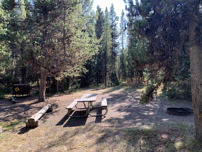 A photo of Site 62 of Loop Loop 1 at Lizard Creek Campground with Picnic Table, Fire Pit, Shade, Food Storage
