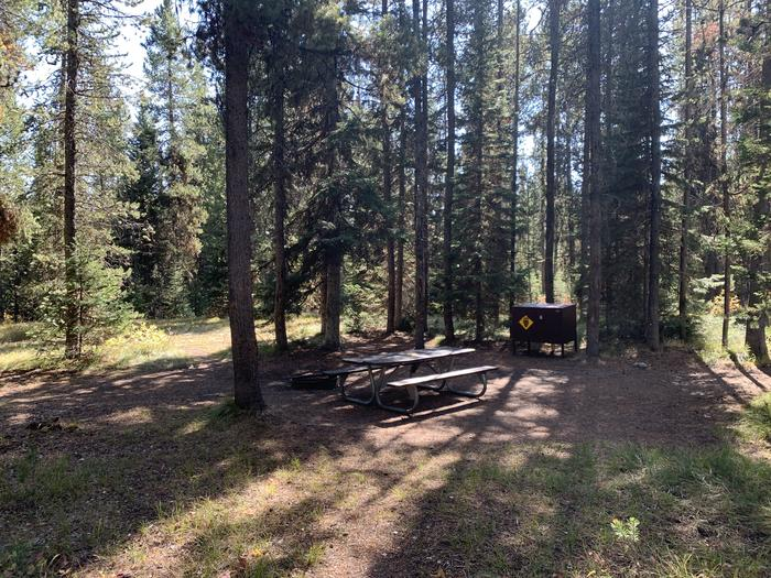 A photo of Site 49 of Loop Loop 1 at Lizard Creek Campground with Picnic Table, Fire Pit, Shade, Food Storage