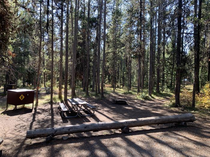 A photo of Site 58 of Loop  Loop 1 at Lizard Creek Campground with Picnic Table, Fire Pit, Shade, Food Storage