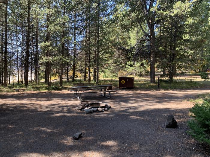 A photo of Site 41 of Loop Loop 2 at Lizard Creek Campground with Picnic Table, Fire Pit, Shade, Food Storage
