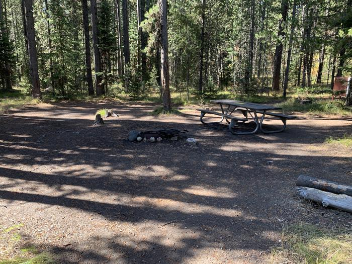A photo of Site 15 of Loop Main Road at Lizard Creek Campground with Picnic Table, Fire Pit, Shade, Food Storage
