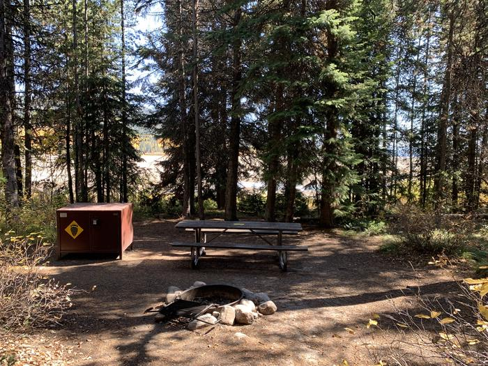 A photo of Site 42 of Loop Loop 2 at Lizard Creek Campground with Picnic Table, Fire Pit, Shade