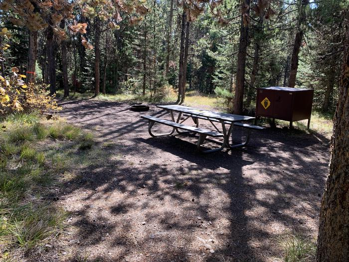 A photo of Site 5 of Loop Main Road at Lizard Creek Campground with Picnic Table, Fire Pit, Shade, Food Storage